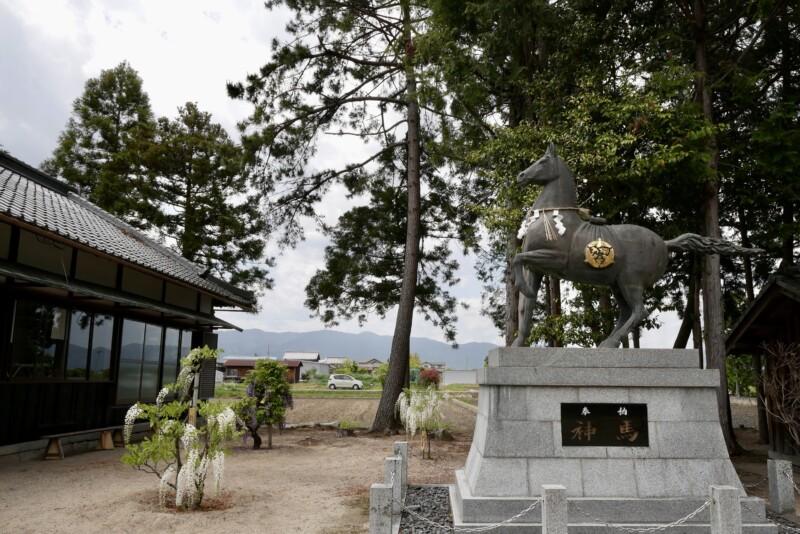 志那神社の神馬
