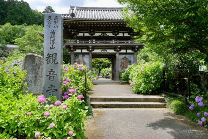 華観音寺(あじさい寺)