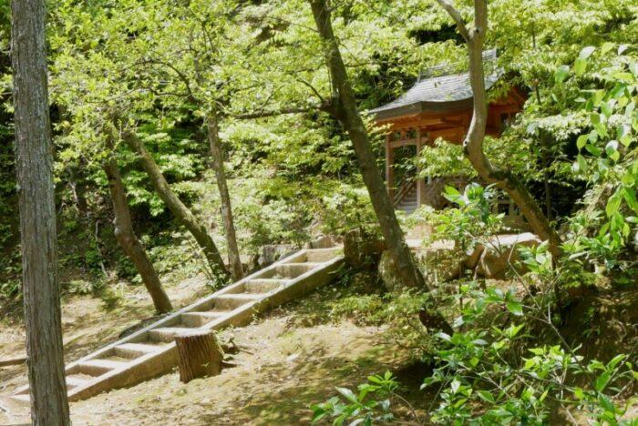 金閣寺の榊雲
