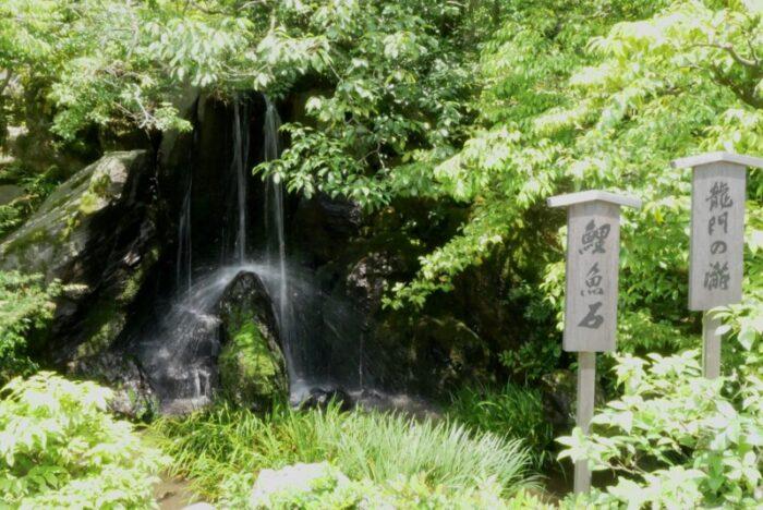 金閣寺の龍門滝
