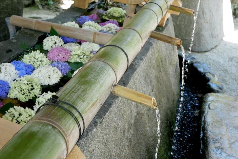 上賀茂神社の神山湧水